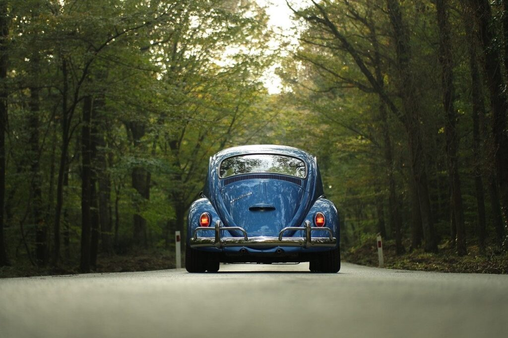 vw beetle car driving through forest